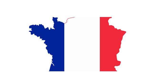 interesni-fakri-za-francia-znamecut2